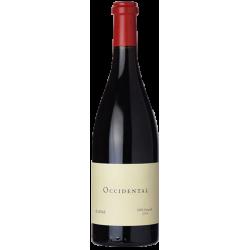 marques de griñon valdepusa 1999