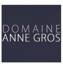 anne gros richebourg 2017