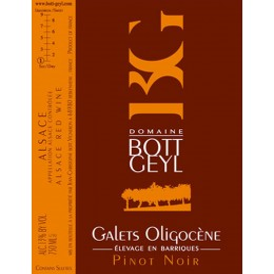 bott geyl galets oligocene rouge pinot noir 2011