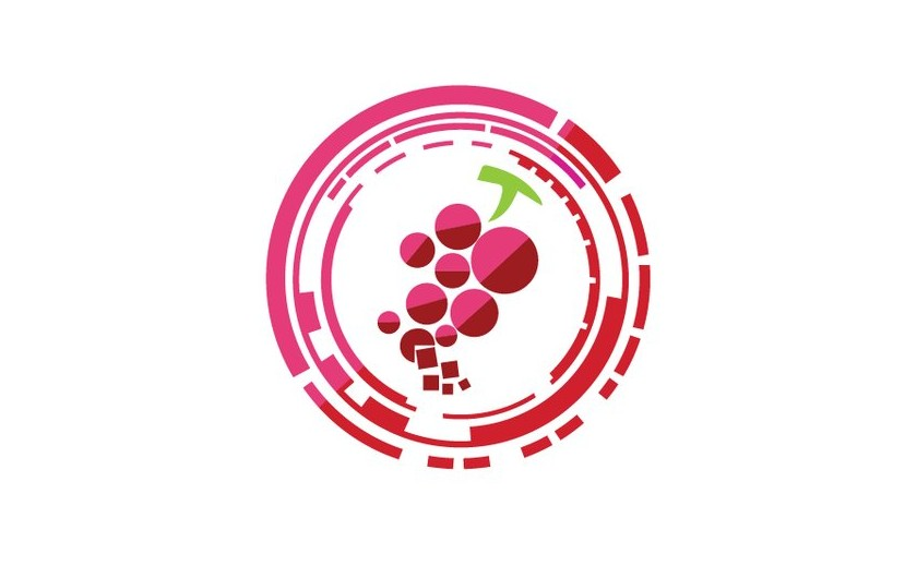 Which are the innovative companies in the wine sector ?