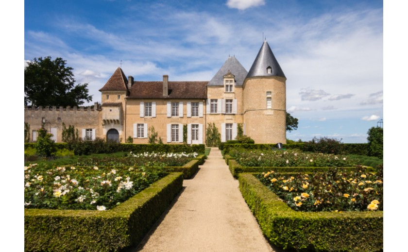 Château d'Yquem, a story of excellence